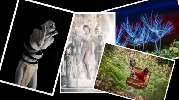 Challenge d'été 2020:  Photo créative
